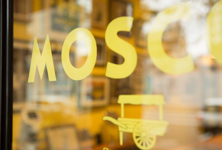 th_moscot_03